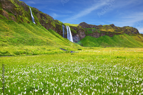 The waterfall and flowering fields