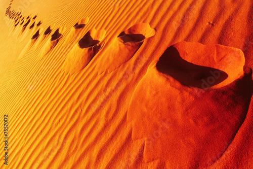 Poster Algérie Footprints on sand dune