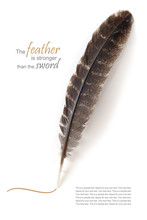Brown Feather Isolated On White, Sample Text