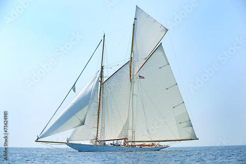 Yacht © bussiclick