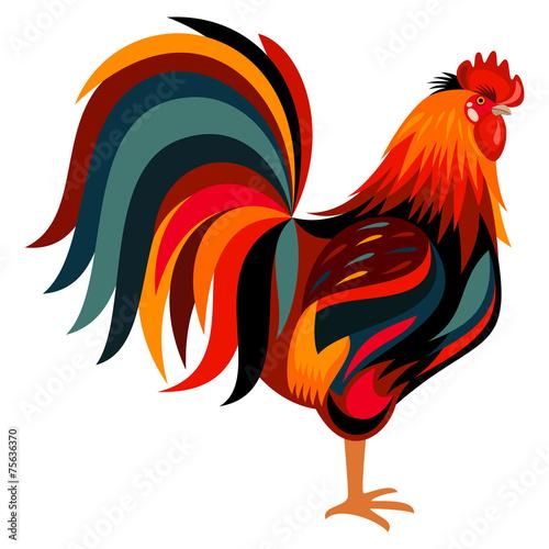 Obraz na plátně Rooster