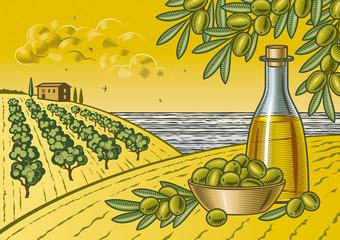 Fototapeta Owoce Olive harvest landscape