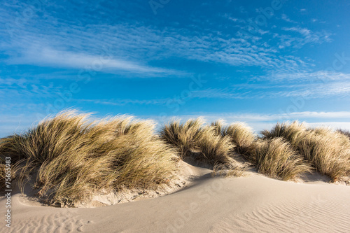 Foto  Düne an der Ostsee
