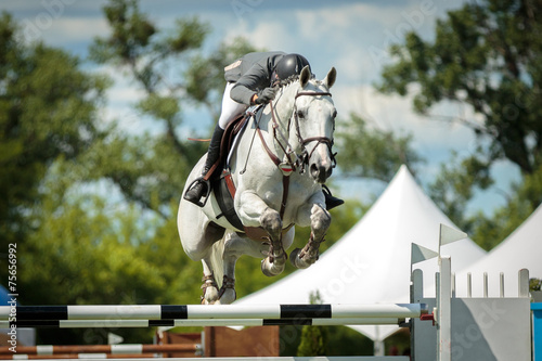 Fotomural Equestrian, horse jumping, show jumping competition themed photograph