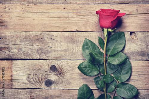 Fototapeta Vintage rose on old wooden background obraz na płótnie