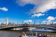 パリ セーヌ川 アレクサンドル3世橋