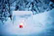 canvas print picture - Ice lantern
