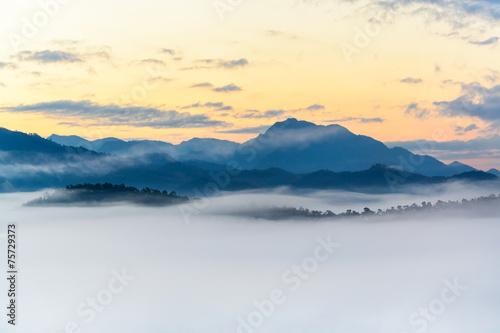 Foto op Aluminium Heuvel Fog on the mountain