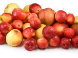 many apples on a white background closeup