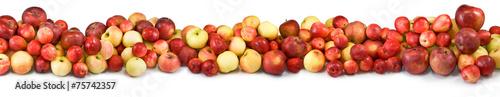 In de dag Verse groenten ripe apples