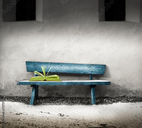 Obraz w ramie libro abbandonato su una panchina
