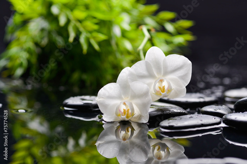 Recess Fitting Spa white three orchid with black stones and green plant