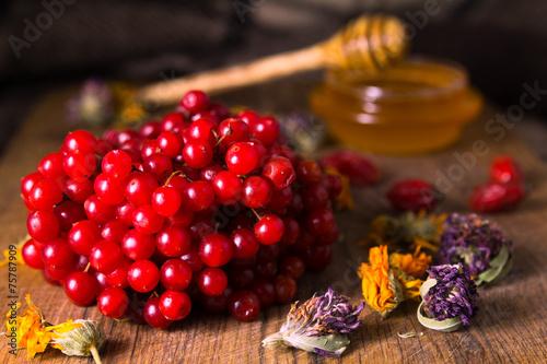 miod-ziola-i-czerwona-porzeczka-na-stole