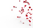 canvas print picture - Rose petals falling on a surface