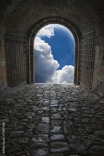 Foto op Aluminium Rudnes Mysterious entrance to new life or beginning