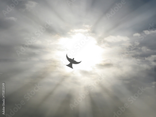 Valokuva  easter holy spirit peace dove flying open sky clouds sun rays