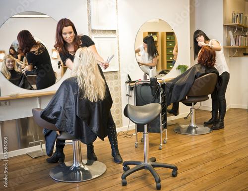 plakat Sytuacja włosów Salon