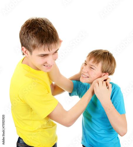 Stampa su Tela Playful Brothers