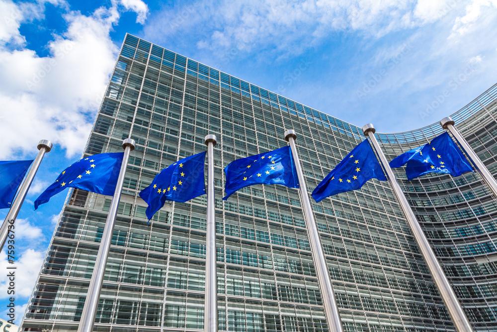 Fototapety, obrazy: European flags  in Brussels