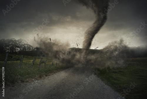 Cuadros en Lienzo Tornado on road
