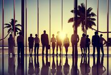Back Lit Business People Corporate Summer Togetherness Concept
