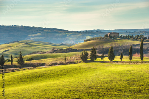 Artistic Tuscan landscape with cypresses, wavy fields and house
