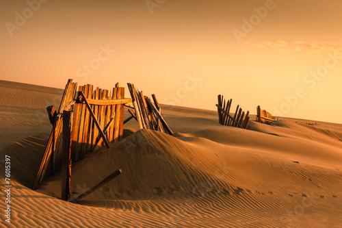 Fences in the sand - 76015397