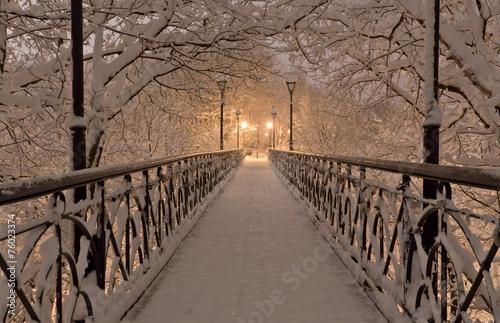 sniegu-most-pod-snieznymi-drzewami-rozgalezia-sie-z-latarniami-ulicznymi-przy-noca