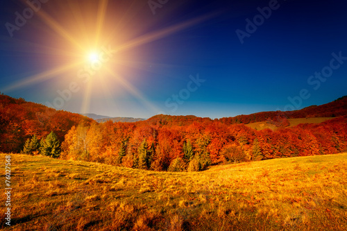 Deurstickers Oranje eclat Colorful autumn landscape