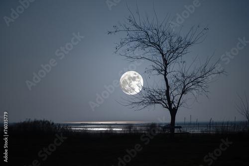 Obraz isola di grado ( italia) luna gradese - fototapety do salonu