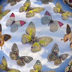 Fototapeta Motyle butterflys