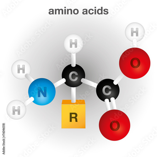 Photo Structure and composition chemical element, amino acid