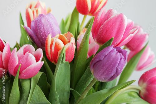 Obraz Bukiet pieknych tulipanów - fototapety do salonu