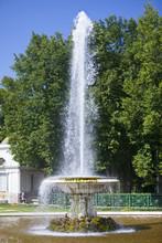 Petrodvorets. Fountain Bowl.