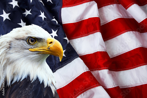 Spoed Foto op Canvas Eagle North American Bald Eagle on American flag