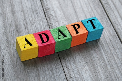 Valokuvatapetti word adapt on colorful wooden cubes