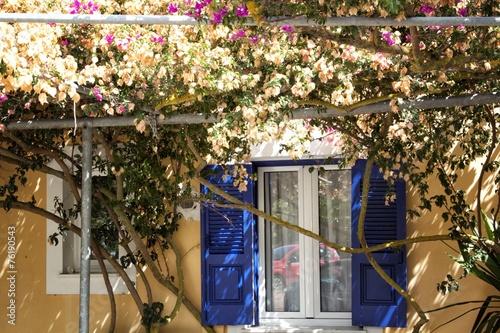 Flower house Wallpaper Mural