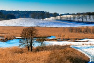 Panel Szklany Zima Zimowa Panorama
