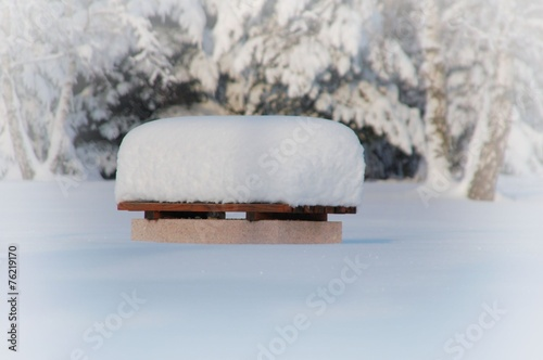 Parkbank mit Schneehaube © alisseja