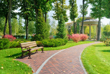 Beautiful Park With Bench