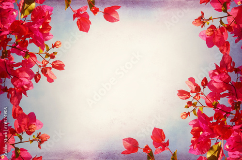 Foto op Canvas Bloemen Flower Frame