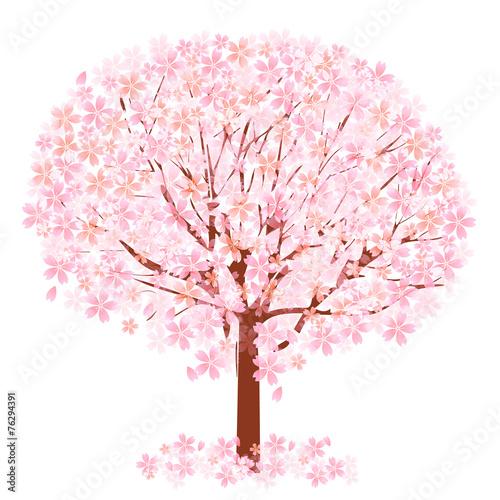 Foto op Canvas Bomen 桜 花 木