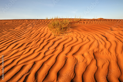 Photo sur Toile Desert de sable Desert landscape, Wahiba Sands, Oman