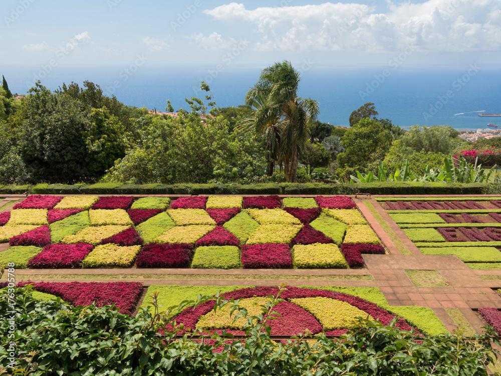 Photo Art Print Jardim Botanico Da Madeira Botanischer Garten