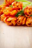 Tulipany w odcieniu pomarańczy