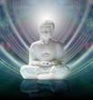 Buddha in Mindful Meditation