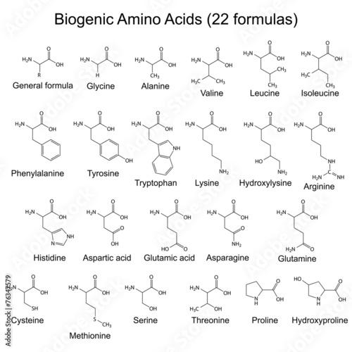 Twenty two biogenic amino acids - chemical formulas Wallpaper Mural