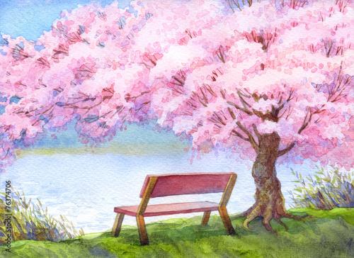 lawka-nad-rzeka-pod-kwitnacym-drzewem