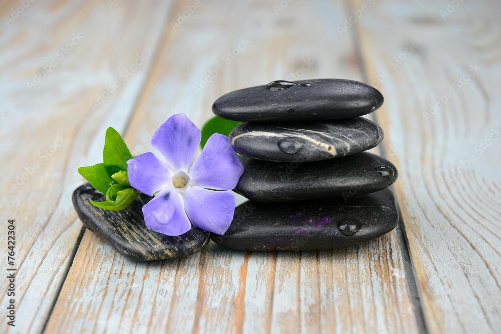 Plakat  Czarni zen kamienie z purpurowym kwiatem