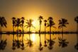 canvas print picture - Sunrise in Miami